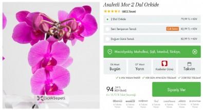 En Iyi Online çiçek Siteleri Aynı Gün Teslim