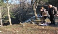 Isparta'da Kaçak Avcılara 16 Bin Lira Ceza Kesildi