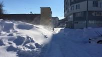 Karlıova'da Tipi Ve Don Etkili Oluyor