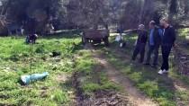 ARAZİ ANLAŞMAZLIĞI - Bursa'da Kardeşlerin Arazi Kavgası Açıklaması 2 Yaralı