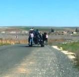 KARAKÖPRÜ - Traktör Turizm Seyahat