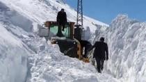 Yolları Açmak İçin 5 Metrelik Karla Mücadele Ediyorlar