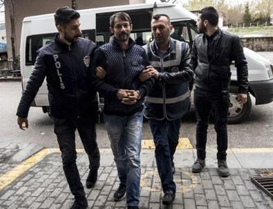 Tepki çeken karar: Ankara'daki köpek katliamının zanlıları serbest bırakıldı