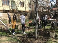 EMEKLİ ÖĞRETMEN - Öğrenciler Emekli Öğretmenin Bahçe Düzenlemesini Yaptılar