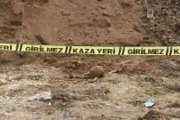 İNSAN KEMİĞİ - Eskişehir'de Akıl Almaz Olay