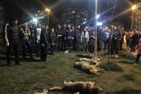 TÜRK CEZA KANUNU - Büyükşehir Belediyesi Soruşturmaya Müdahil Oldu