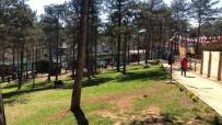 Geniş Arazi İçinde Kamp, Doğa Ve Binicilik İmkanları Bir Arada Sunuluyor