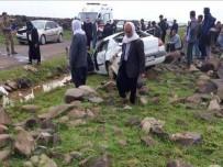 VİRANŞEHİR - Yoldan Çıkan Otomobil Devrildi Açıklaması 1 Ölü, 2 Yaralı