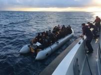ARAŞTIRMA GEMİSİ - Didim'de 49 Kaçak Göçmen Yakalandı
