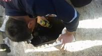 FOSEPTİK ÇUKURU - Kuyuya Düşen Oğlak Yavrusunu İtfaiye Kurtardı