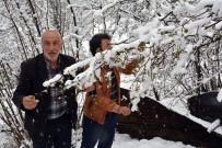 GÜNEŞLI - Ordu'da Nisan Karı Çiftçileri Endişelendirdi