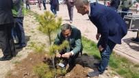 MURAT DURU - Develi'de Ağaç Dikme Etkinliği Düzenlendi