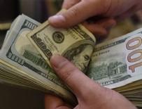 DOLAR - Dolar o rakamı gördü!
