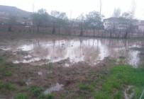Kovancılar'da Yağış, Ekinlere Zarar Verdi