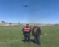 JANDARMA KOMUTANLIĞI - Kaybolan Büyükbaş Hayvanlar Drone İle Bulundu