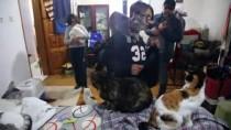 BÖBREK RAHATSIZLIĞI - Engelli Sokak Hayvanlarının 'Koruyucusu' Oldu