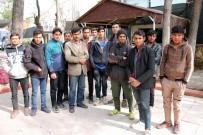 Midyat'ta 3 Günde 49 Kaçak Göçmen Yakalandı