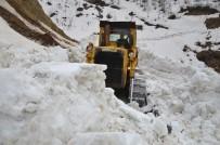 KARLA MÜCADELE - Muş'ta Karla Mücadele Sürüyor