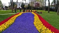 EMIRGAN - (Özel) İstanbul'u 20 Milyon Lale Renklendiriyor