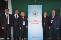 Sinop'ta 'Damar Cerrahisinde Gri Alanlar' Toplantısı