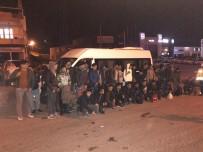 KAÇAK - Tekirdağ'da 275 Kaçak Göçmen Yakalandı
