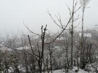 TARıM - Nisan Ayında Lapa Lapa Kar Yağışı