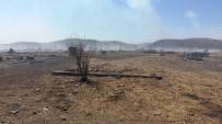 RUSYA DEVLET BAŞKANı - Rusya'daki Orman Yangını Ardında Felaket Bıraktı