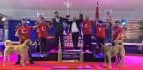 Sivas'ın Kangalları Dünya Şampiyonu Oldu