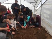 Bingöl'de Yerli Tohum Ekimi