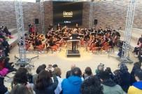 DOĞUŞ YAYıN GRUBU - Göbeklitepe'de Çocuk Orkestrasından Senfoni Konseri