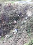 GÜMELI - Gümeli Ormanı Çöp Deposu Oldu