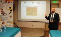 AKUPUNKTUR - Aydın'da Antiterapi Çalıştayı Düzenlendi