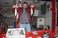 Balık Av Sezonu Bitti, Fiyatlar Yükseldi