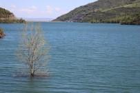 Yağan Yağmurlar Barajları Doldurdu