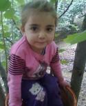 Kaybolan Küçük Kız Cansız Bedeni Derede Bulundu