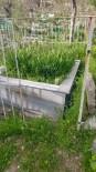 Silvan'da Mezarlık Demirleri Çalındı