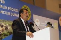 NIHAT ÇELIK - TÜDKİYEB Başkanı Çelik Açıklaması 'Bayramda Tanzim Merkezler Kurulmalı'