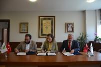 ALI HAYDAR - Düzce Üniversitesi Fındık Verimini Ve Kalitesini Artırmak İçin Çalışıyor