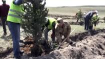 Kars Barajı Çevresinde 2100 Fidan Toprakla Buluştu