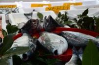 1 EYLÜL - Balık Avında Son 10 Gün