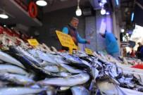 BALIK FİYATLARI - Balıkta Bereketli Sezon