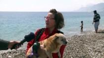 HAVA SICAKLIĞI - Antalya'da Nisanda Deniz Keyfi