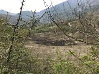 ANIZ YANGINI - Kastamonu'da Çıkan Anız Yangının İtfaiye Söndürdü
