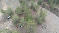 YABANCI ÖĞRENCİLER - Kilometrelerce Uzaktan Gelip Sivas'ta Çöp Topladılar