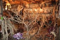 DEKORASYON - (Özel) Ağaç Köklerini Farklı Objelere Dönüştürüyor
