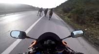 Bir Anda Karşılarına Çıktı Açıklaması Sürücüleri Şaşkına Çevirdi
