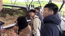 BELGESEL FİLM - Göbeklitepe'ye Çinlilerin İlgisi Artıyor