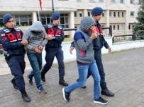 YERKESIK - Akbük'te Ağaçları Kesen Şahıslar Tutuklandı