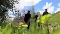 Endemik Çiçeklerin Kadim Kent Diyarbakır'da Görsel Şöleni