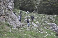 Ormanlık Alanda Bulunan Ceset Morga Kaldırıldı